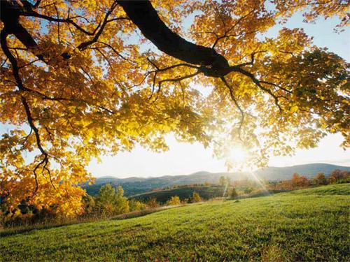 Осень — прекрасная пора!